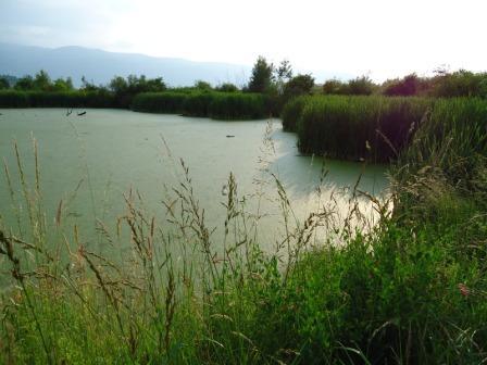 jezero5