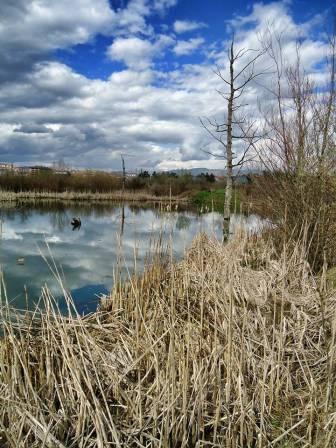 Jezero slike