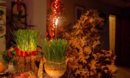 Ko želi da ima puno novca, na Badnji dan treba da pojede PLOD OVE BILJKE!