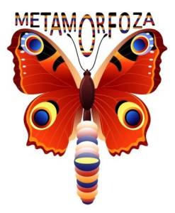 meta12fo