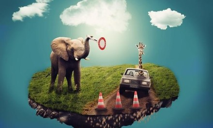 INSPIRATIVNA PRIČA: Slon i njegova vizija slobode