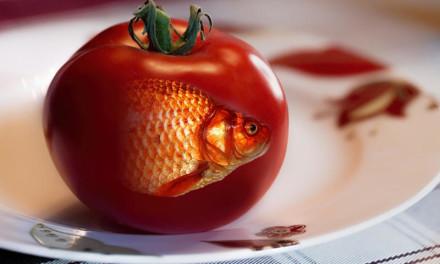 PRVI SMRTNI SLUČAJ PROUZROKOVAN GMO HRANOM!