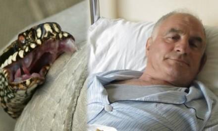 VOZIO 12 KILOMETARA SA UJEDOM ŠARKE: Ovo je Nišlija koji je preživeo ujed otrovnice! (FOTO)