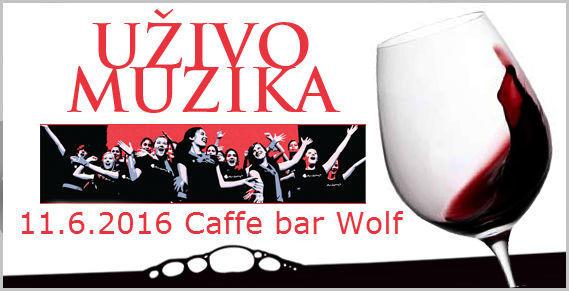 CAFFE BAR  WOLF ISTOČNO SARAJEVO