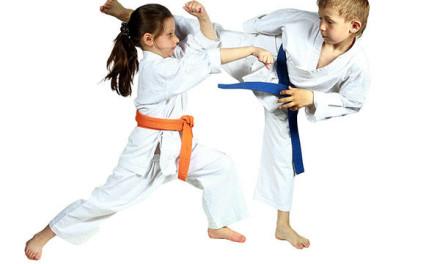 Upis u toku Karate klub Tigar
