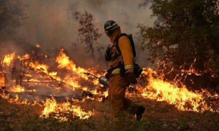 Požari u BiH odnose živote i imovinu