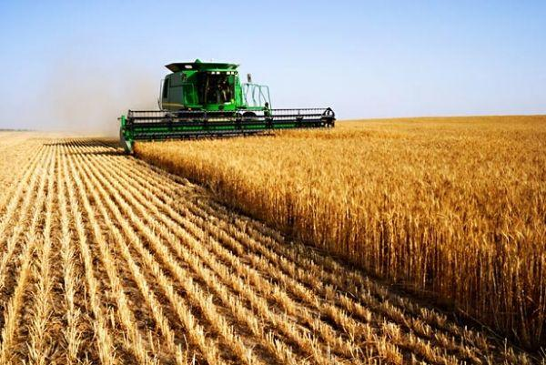 Objavljen Pravilnik o uslovima i načinu ostvarivanja novčanih podsticaja za razvoj polјoprivrede i sela