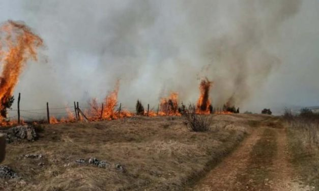 Na području grada Istočno Sarajevo u martu registrovano 186 požara
