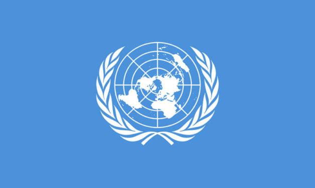 Posao: United Nations Development ProgrammeSarajevo