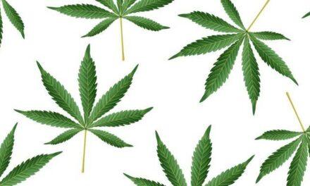 U Veroni, u keksi i uglju prevozili 232 kilograma droge